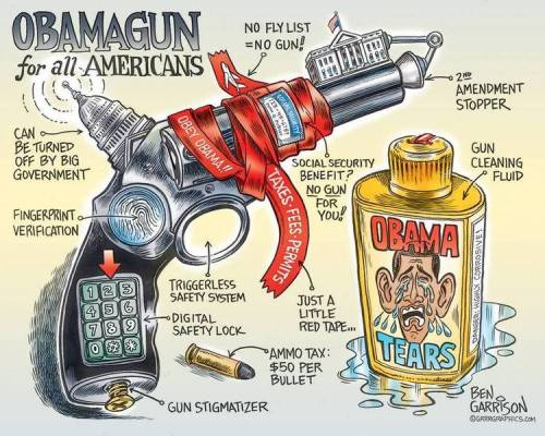 ObamasPerfectGun